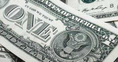 Dollar Bills for Taxes